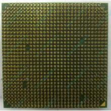 Процессор AMD Sempron 3000+ (1.6GHz) SDA3000IAA3CN s.AM2 (Дмитров)